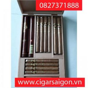 Xì gà Balmoral Selection Collection 12's